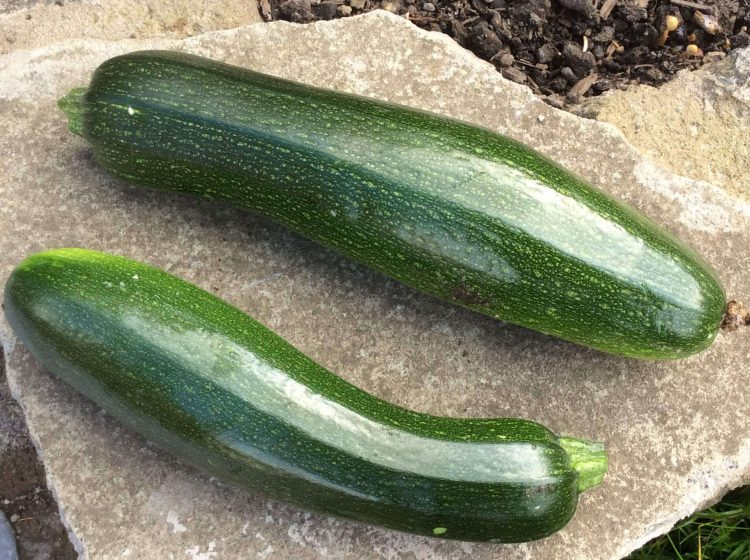 Cracking Courgettes